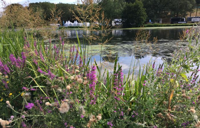 Just under 3,000 people take to the water at Countryfile Live
