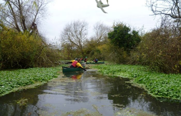 Waterways Case Study - How paddlers can make a huge difference when tackling non-native species