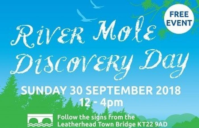 River Mole Discovery Day Returns to celebrate World Rivers Day