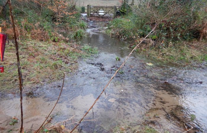 Fundraising appeal launched for urgent repairs to land at the River Dart
